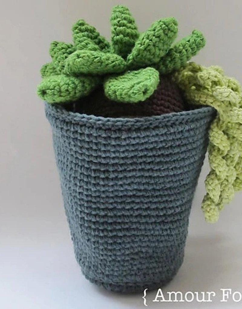 Flora the Succulent <br /> Fridays, April 5 &amp; 12th, 4:30-6:30pm