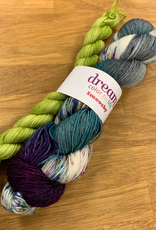 Dream in Color Smooshy Sock Pairing