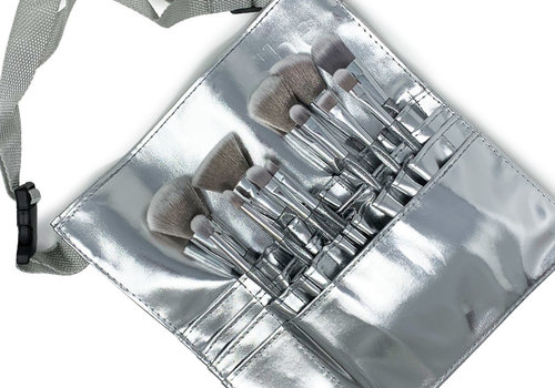 12 Pc Brush Set with Silver Waist Bag