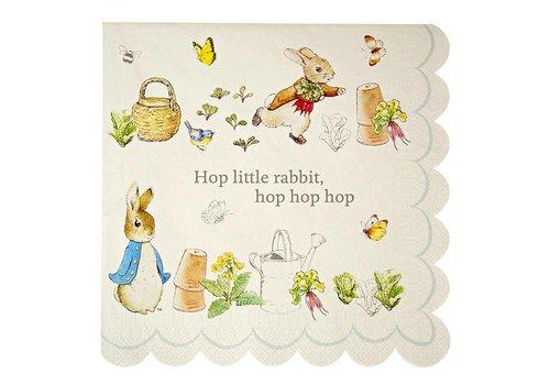 Meri Meri Peter Rabbit  Large Napkin