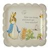 Meri Meri Peter Rabbit Large Plate
