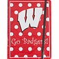University of Wisconsin NCAA Journal