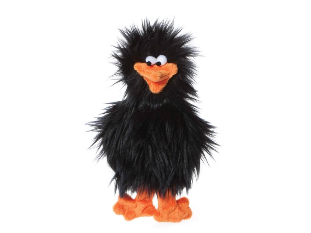 WestPaw Spring Chicken, Noir
