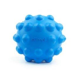 Petprojekt Bumpi Bleu