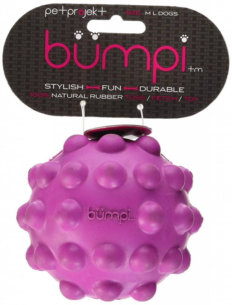 Petprojekt Bumpi Violet