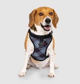 Canada Pooch Harnais Everything Harness, Plaid Bleu