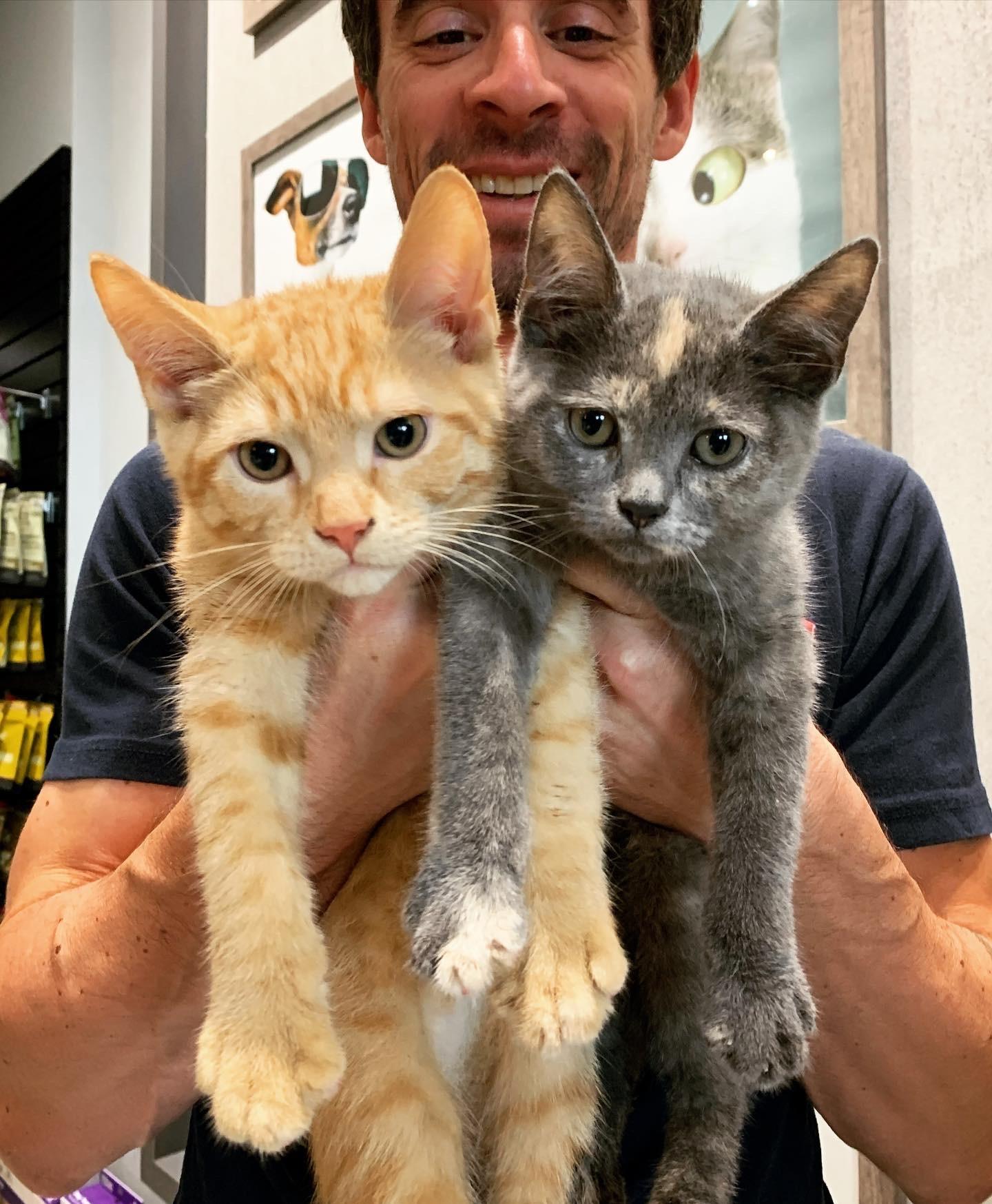 Adoption Fredon et Félicia