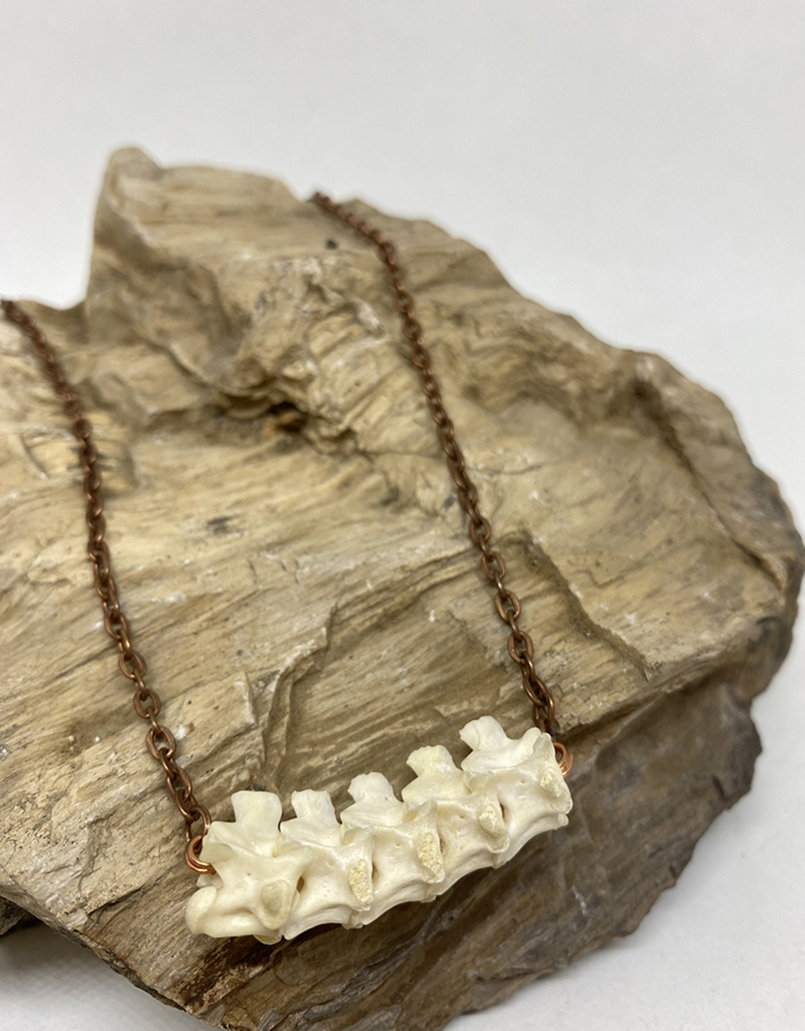 Perilin Jewelry Vertebrae Necklace by Perilin Jewelry