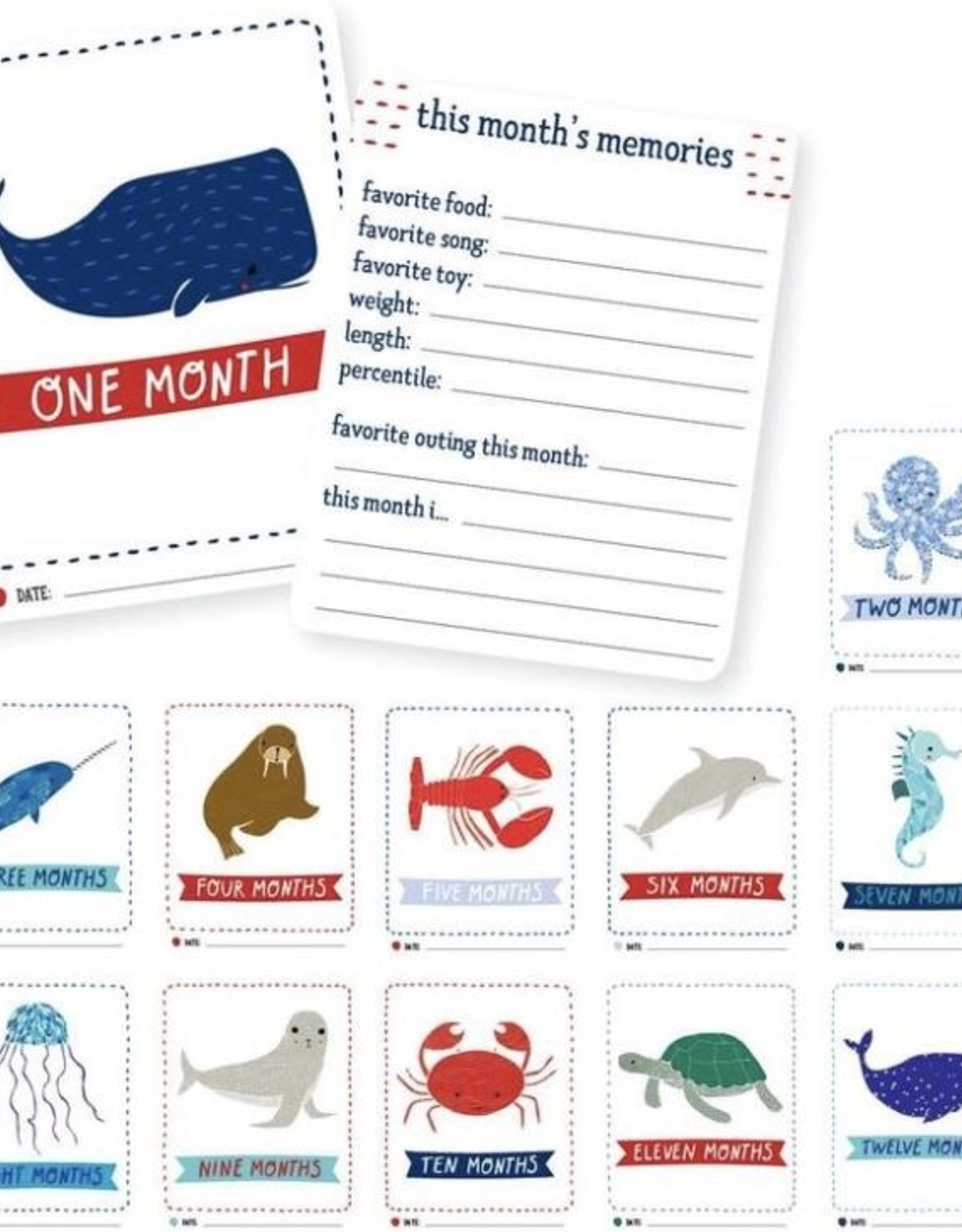 Gingiber Baby Milestone Cards by Gingiber