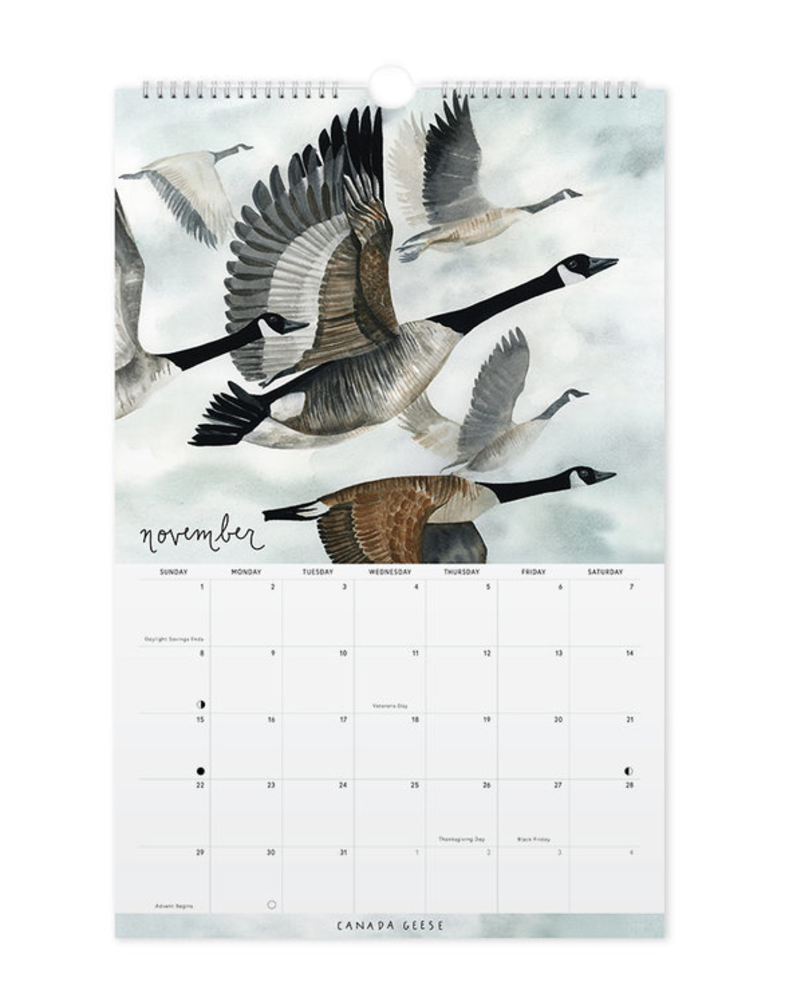 May We Fly 2020 Birds of America Calendar by May We Fly