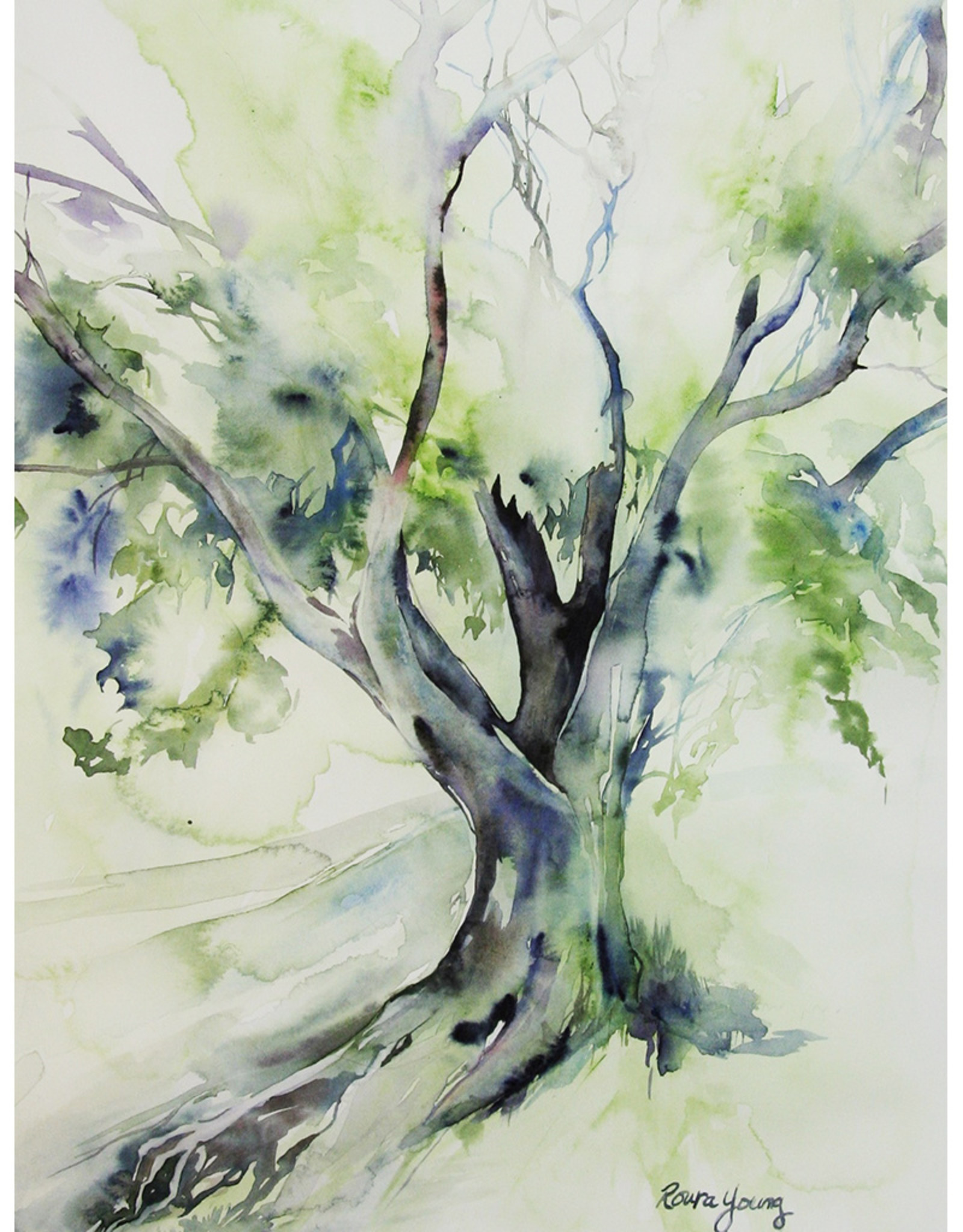 Roura Young Tree After Rain