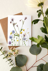 May We Fly Assorted Flora Everyday Cards by May We Fly