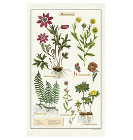 Cavallini Papers-Herbarium Tea Towel