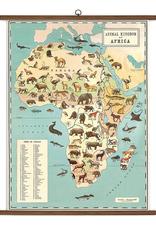 Vintage Style School Chart - Animal Kingdom