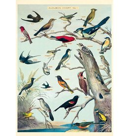 Poster Wrap Sheet - Audubon Birds