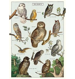 Poster Wrap Sheet - Owls