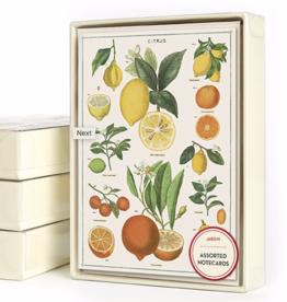 Jardin Cards Assorted - Box 8