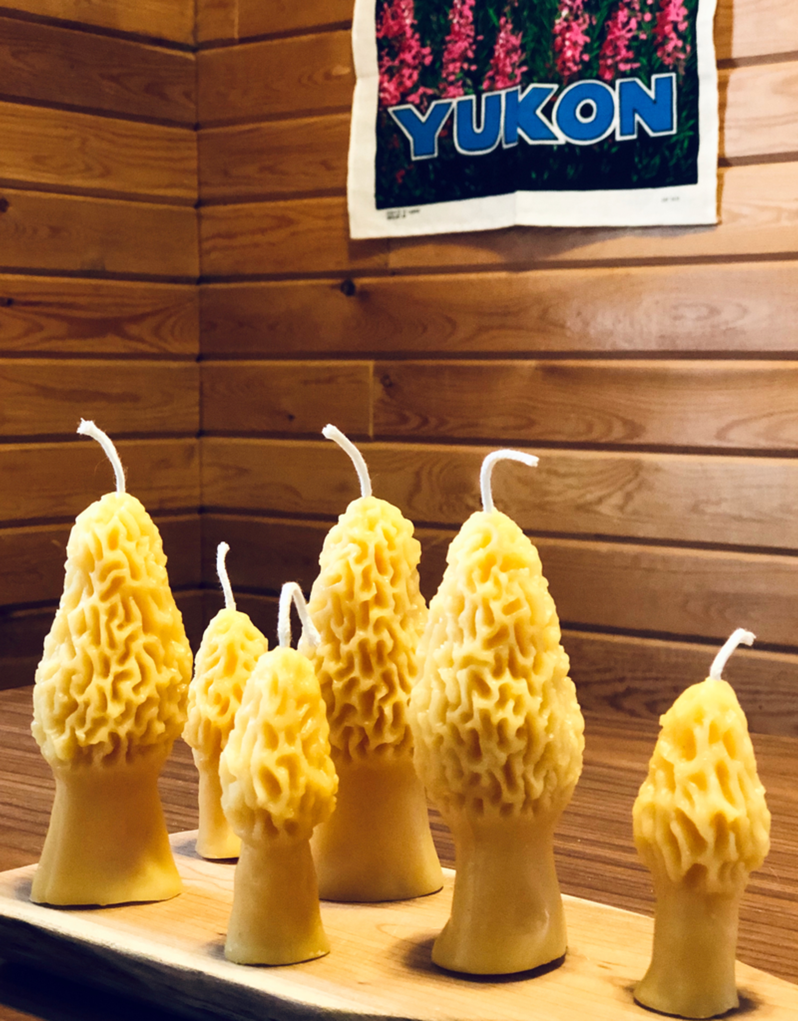 Yukon Morel Beeswax Candles, Set/2