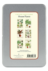 Houseplants Postcard Set