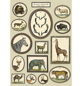 Natural History Animals Wrapping Paper Sheet
