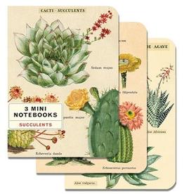 Succulents Mini Notebook Set/3