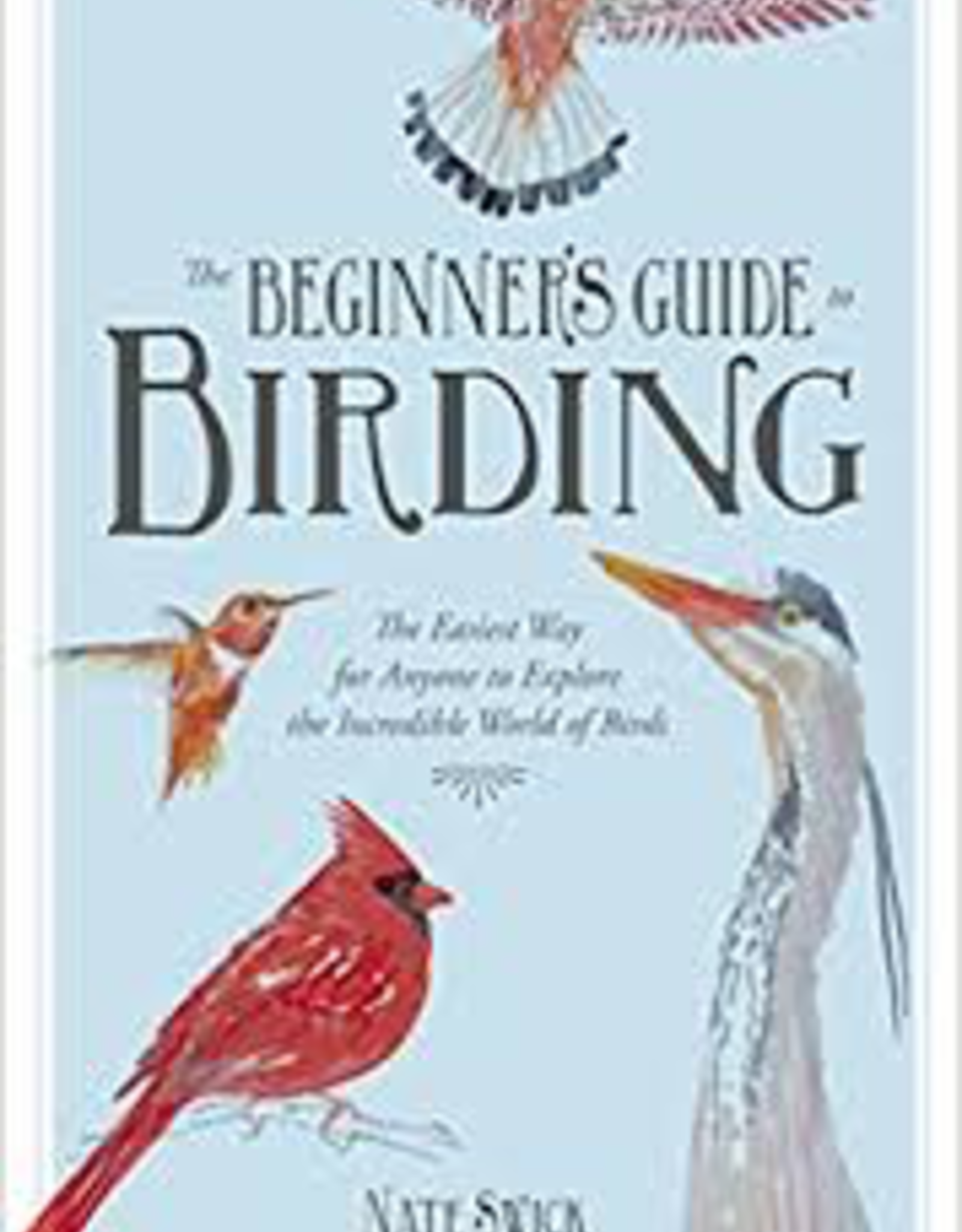 Beginners Guide To Birding
