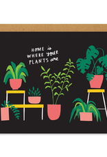 Houseplants Home