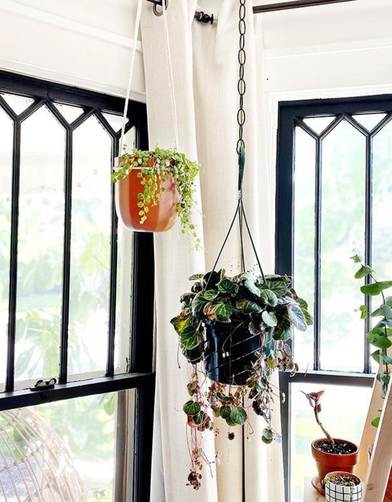 Loop Planter - Terracotta
