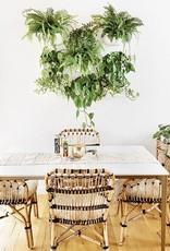 Wall Planter - White