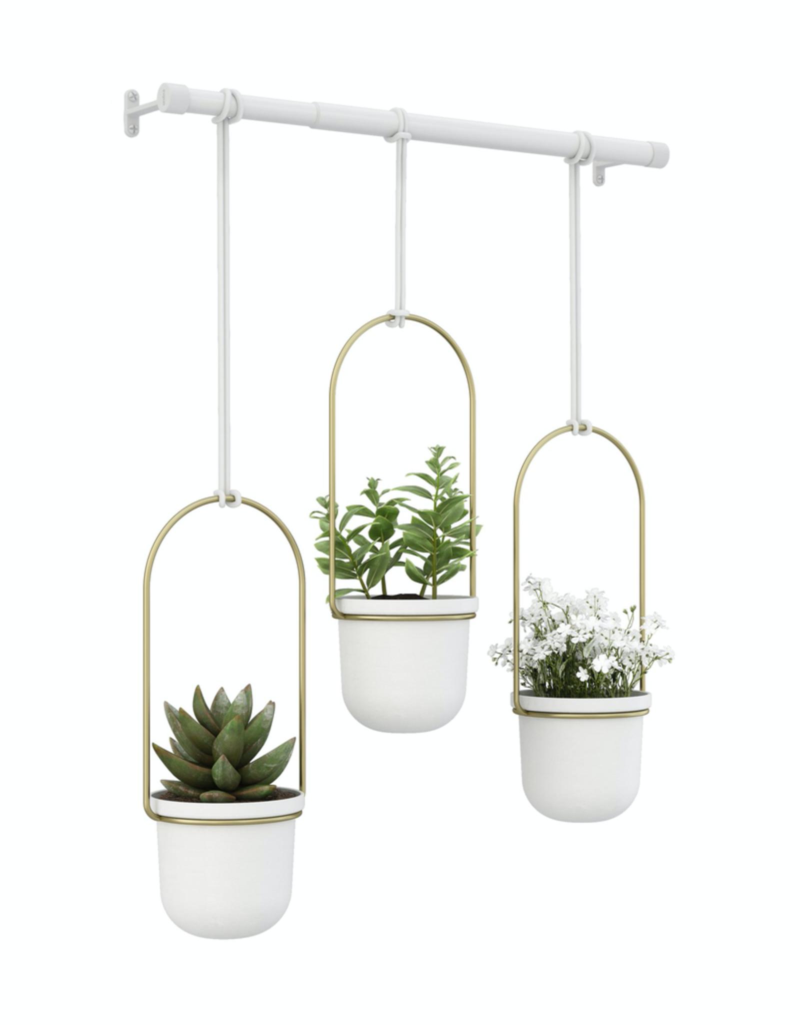 Triflora Hanging Planter White/Brass