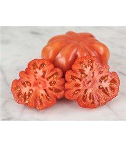 Baker Creek Tomato - Mushroom Basket Seed