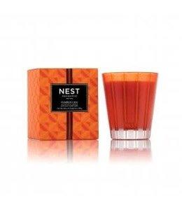 Nest Candle Pumpkin Chai 8 oz