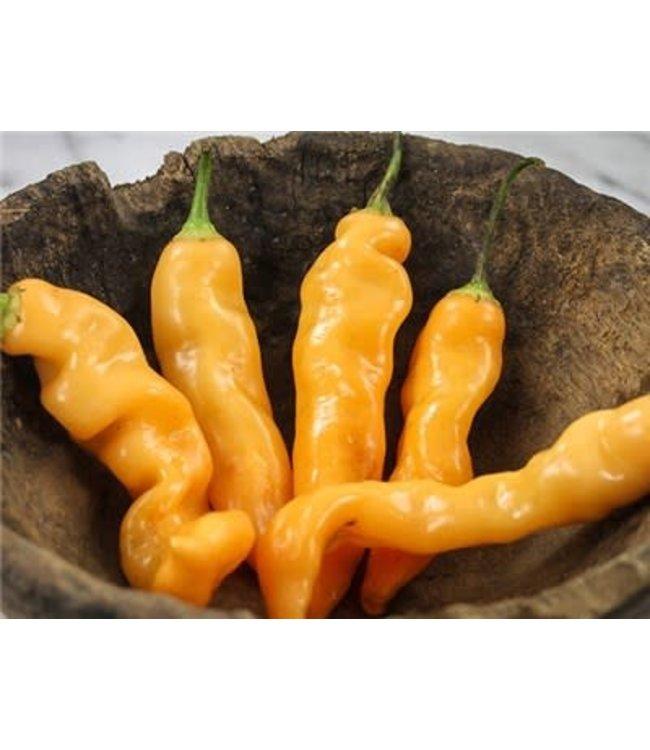 Baker Creek Hot Pepper - Sugar Rush Peach Seed