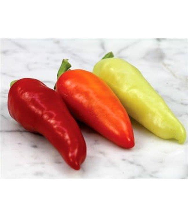 Baker Creek Pepper - Santa Fe Grande Seed