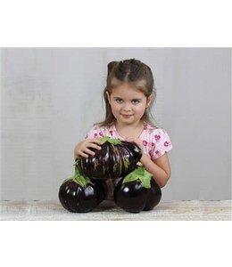 Eggplant - Aswad Seed