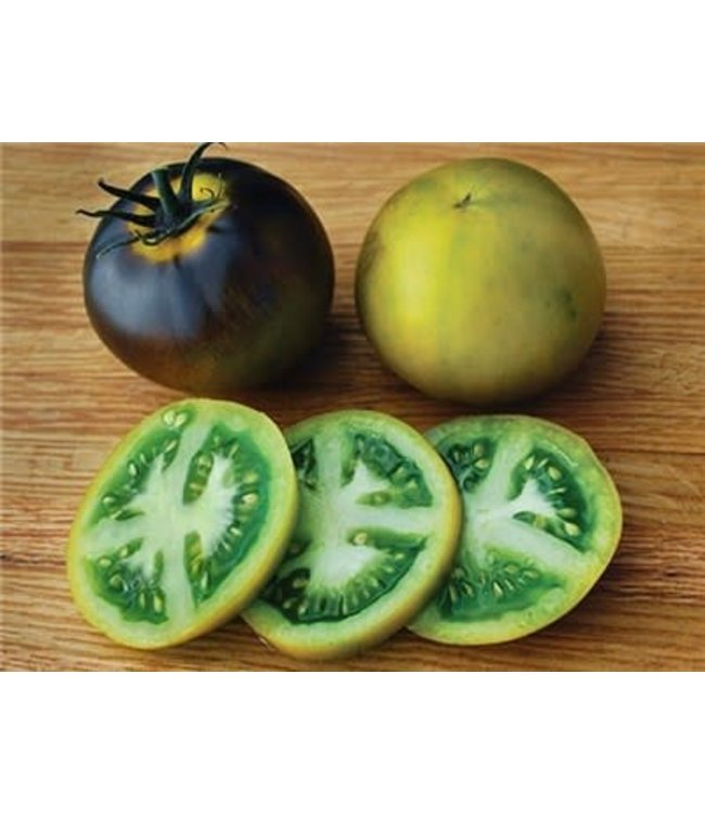 Baker Creek Tomato - Wagner Blue Green Seed