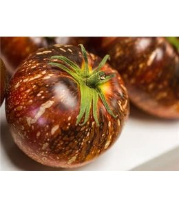 Baker Creek Tomato - Dark Galaxy Seed