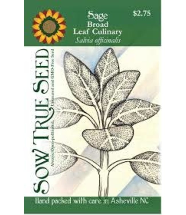 Sow True Seed Sage - Broad Leaf Culinary
