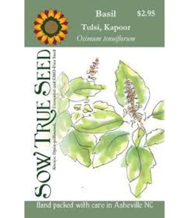 Sow True Seed Basil - Tulsi Kapoor Holy