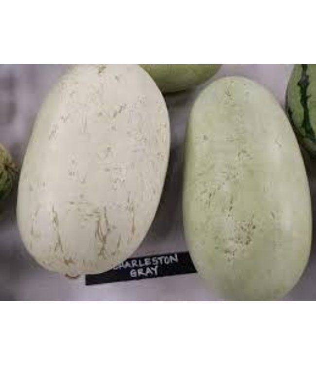 Sow True Seed Watermelon - Charleston Grey