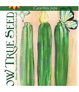 Sow True Seed Summer Squash - Cocozelle Zucchini