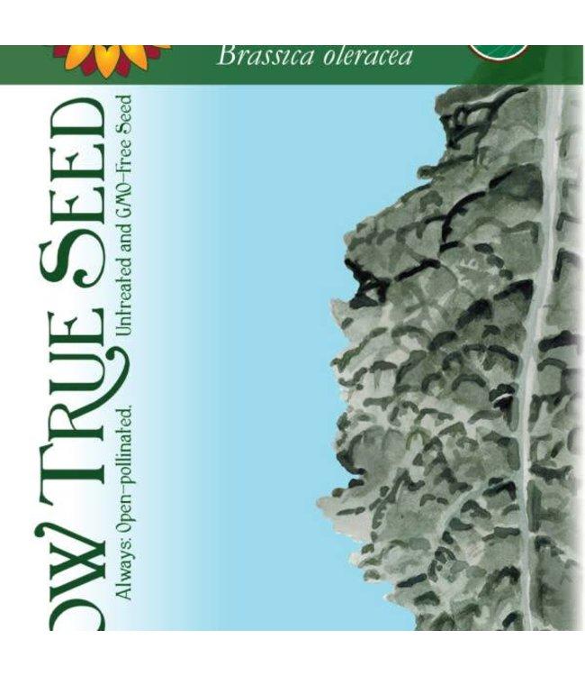 Sow True Seed Kale - Lacinato