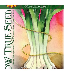 Sow True Seed Bunching Onion - Long White