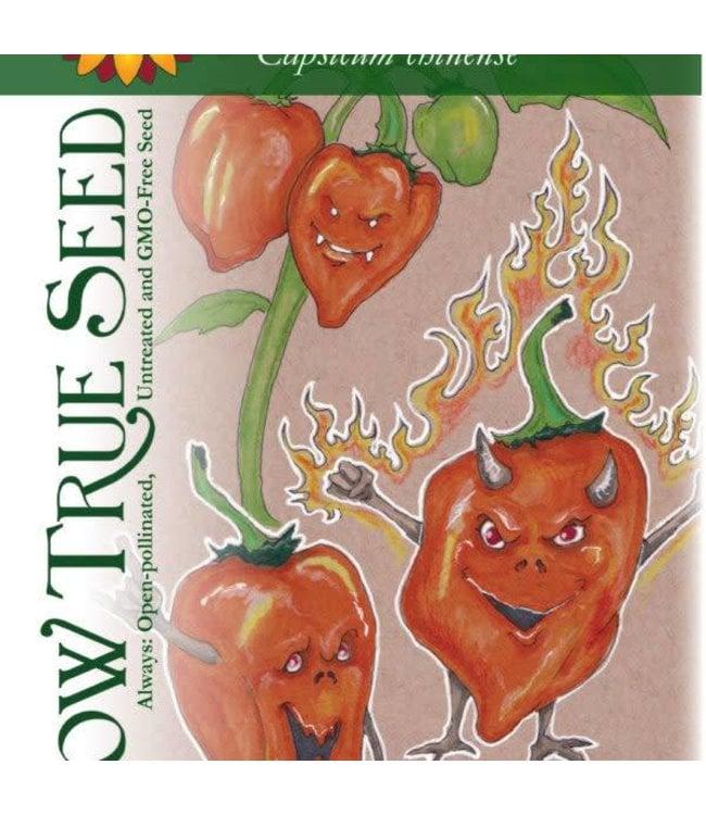 Sow True Seed Hot Pepper - Orange Habanero