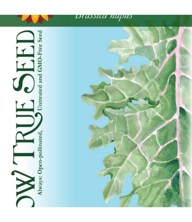 Sow True Seed Kale - Red Russian