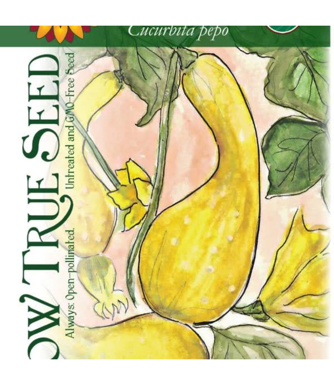 Sow True Seed Summer Squash - Crookneck