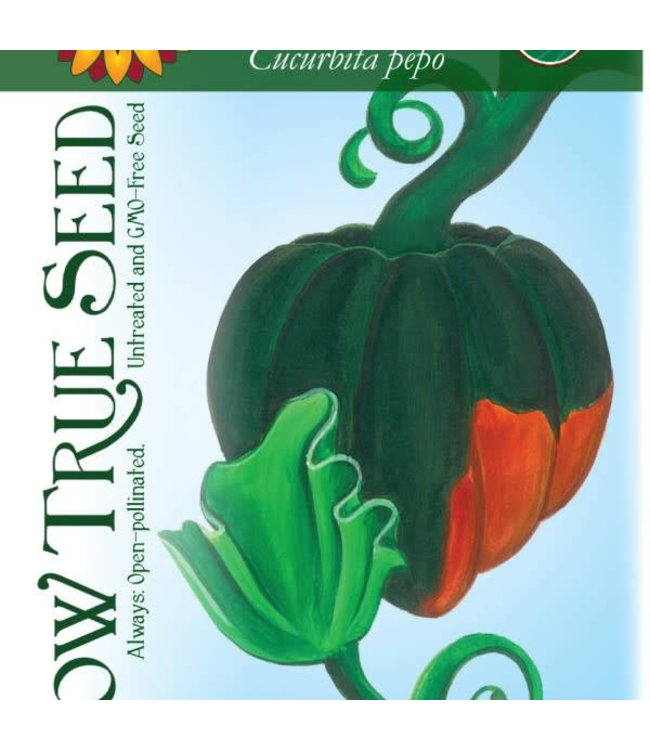 Sow True Seed Winter Squash - Table Queen Bush Acorn Organic