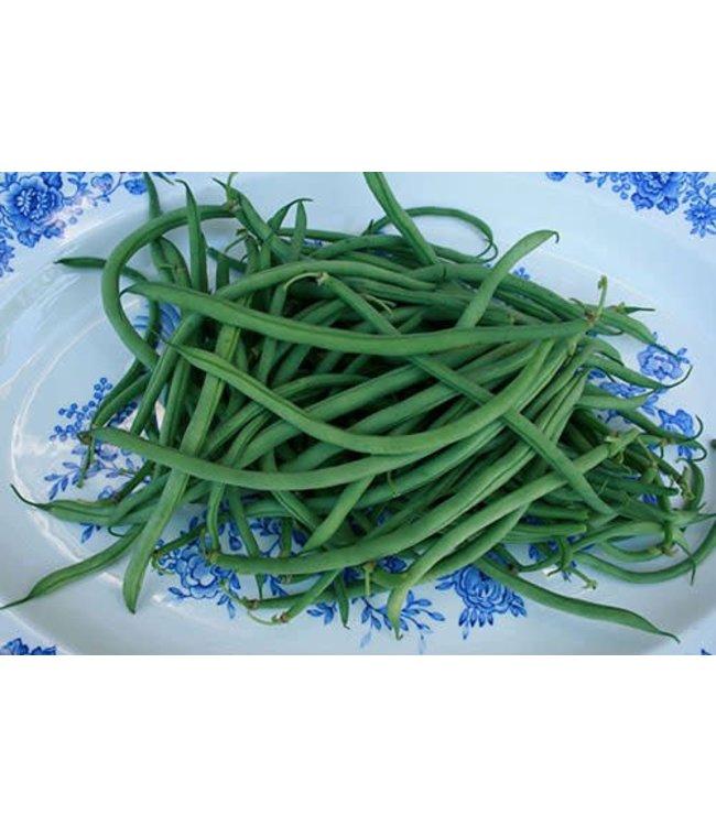 Sow True Seed Bush Bean - French Garden