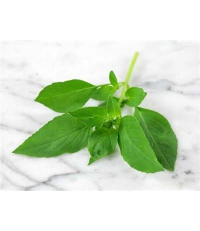 Baker Creek Basil - Lime Seed
