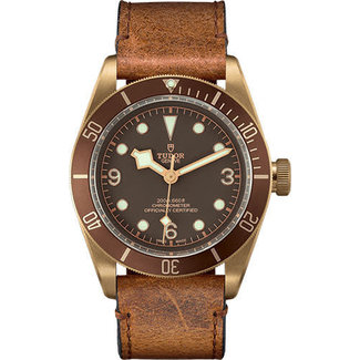 Tudor TUDOR BLACK BAY BRONZE (2019 B+P)